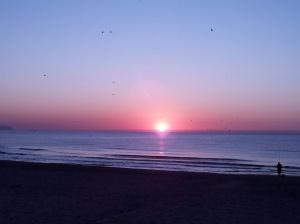 Playa de Muchavista en El Campello.